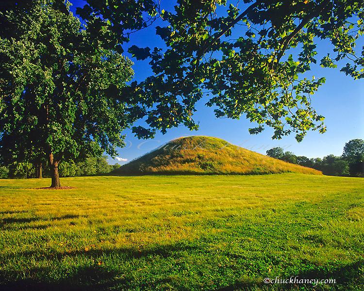 Cahokia Mounds State Historic Site near Collinsville Illinois
