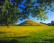 Cahokia Mounds State Historic Site near Collinsville Illinois