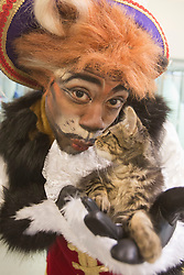 "© Licensed to London News Pictures. 23/10/2013. London, England. Pictured: KAT B with stray kitten ""Emily"", 10 weeks. Actor KAT B visits the cattery of Battersea Dogs & Cats before starring in the title role of the ""Puss in Boots"" Christmas Panto at the Hackney Empire, London. Hackney Empire and the Battersea Dogs & Cats Home have teamed up to find homes for rescue moggies which will be featured in the pantomime programme. Photo credit: Bettina Strenske/LNP"
