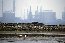 Oil terminus; Seal Sands Teesside UK