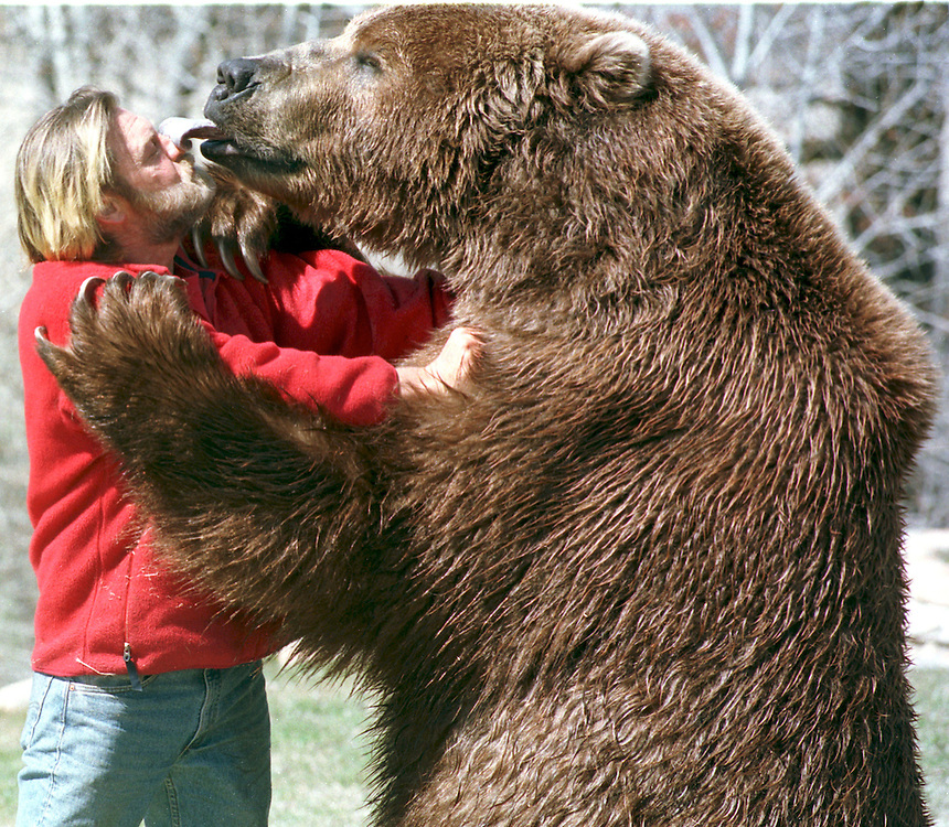 Bart the Bear gives his trainer Doug Seus of Heber City, Utah a kiss Oct. 12, 2001 Photo by August Miller