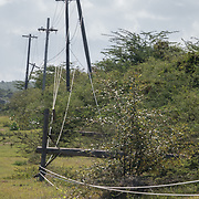 AUGUST 27, 2018--VIEQUES---PUERTO RICO--<br /> Downed power lines in Vieques almost one year after the path of Hurricane Maria destructiveness.<br /> (Photo by Angel Valentin/Freelance)