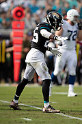 Jacksonville Jaguars defensive back D.J. Hayden (25) waves his arms during the NFL week 13 regular season football game against the Indianapolis Colts on Sunday, Dec. 2, 2018 in Jacksonville, Fla. The Jaguars won the game in a 6-0 shutout. (©Paul Anthony Spinelli)