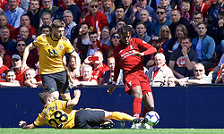 LIVERPOOL, ENGLAND - Sunday, May 12, 2019: Liverpool's Divock Origi (R) and Wolverhampton Wanderers' João Moutinho (L) during the final FA Premier League match of the season between Liverpool FC and Wolverhampton Wanderers FC at Anfield. (Pic by David Rawcliffe/Propaganda)