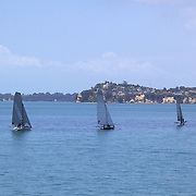 Yacht's sailing in the Hauraki Gulf in Auckland Harbour. Auckland, North Island. New Zealand, 26th November 2010. Photo Tim Clayton..
