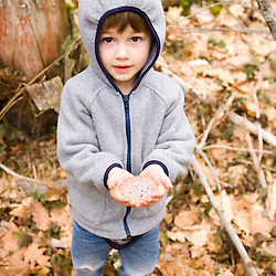 A boy holds salamander eggs near Gulf Brook Ravine in Pepperell, MA.