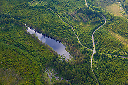 Logging roads and wetlands in the Cold Stream watershed in industrial timberland in Maine's Northern Forest.