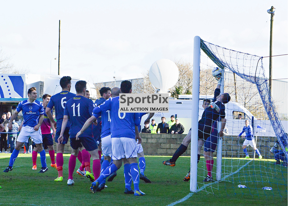 Almost shout the Stranraer players as Frank McKeown's header is saved on the line by the Morton keeper Derek Gaston....(c) BILLY WHITE | SportPix.org.uk