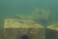 Concrete Fish Cribs<br /> <br /> Engbretson Underwater Photography