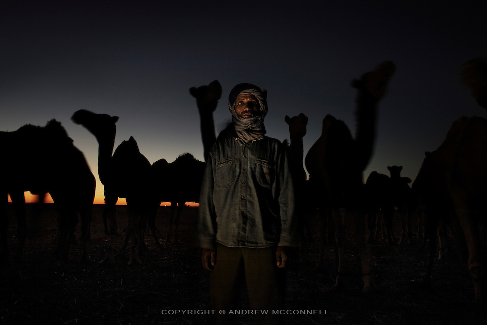 Lahbieb Embarek Ahmed, 47, camel worker, pictured in the desert near the Saharawi refugee camps, Algeria...I was born in Farsia in 1962. I only thing I know is camels. I have lived with camels and they have lived with me and that's all I know. I began to deal with camels when I was a very little child. I would look after them and take them to feed long distances sometimes if I wanted to milk them I had to take the bowl between my teeth and milk them. My father thought me under the camels. There are a lot of uses for the camels, we don't only drink their milk or eat the meat but we use it as a cure... we add oils from the camel to the milk and drink it for some diseases. And if they are sick I know how to treat them. If the camel doesn't want to eat I take a lizard and mix it with some plants and feed them it...We owned about one hundred camels. It's difficult to look after camels, we let them go in the summer because they will return after two days or so to the well and you are not worried about them. In the winter you have to keep them together because they have babies. The camel is a good friend to the human, when you are alone in the desert you have no friends but there you learn how to be friends with him. They can smell their owners and know their smells, when there is something between you and the camel he will come to you and you can touch him easily and he will seat down easily. In the mating season the male will get angry and he will fight with the other males and even as the owner you cannot go near him. I like the calm camels, the angry ones I beat all the time. ..A male camel is worth around 80,000 Dinars (700 euros), for a female 30 or 40,000 Dinars, there is more meat on the male. I am working with these camels for Ramadan, will we kill all of them for the Saharawi people to eat and celebrate the end of Ramadan. Not everybody can kill the camel but I can. I prefer to live in the countryside but when I had no camels I came here. I remember many good thi