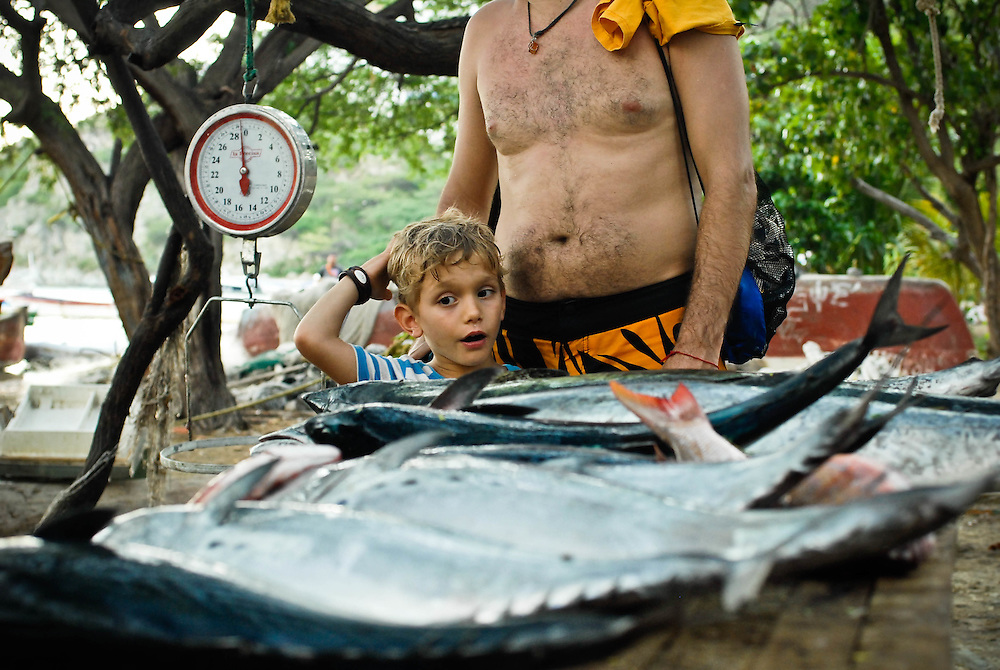 A young boy looks at the day's catch in the Colombian fishing market of Taganga.