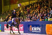 Willem Greve - Grandorado TN<br /> KWPN Hengstenkeuring 2017<br /> © DigiShots