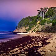 Fitzgerald Marine Reserve. Moss Beach, CA