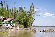 Boat tour at Split Lake to see dam effects: erosion, driftwood, trees falling in and being piled up for burning.