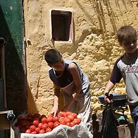 Kids selling tomatos in the souk, Tetouan, Morocco