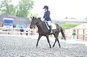 08 - 01st Jul - Dressage