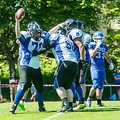 Zürich Renegades vs Luzern Lions