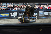 15 October 2010-New York, NY- Atmosphere at the The Professional Bull Riders' (PBR) Compettion in the Built Ford Tough Road to Las Vegas Series presented by Cooper Tires and held in New York's Times Square on October 15, 2010 in New York City. ..The Times Square competition is a special prelude event to the 2010 PBR World Finals. The 2010 PBR Ford Tough World Finals will take place October 20-24 in Las Vegas, where the coveted PBR Championship Buckle and a $1 Million bonus are up for grabs. Photo Credit: Terrence Jennings