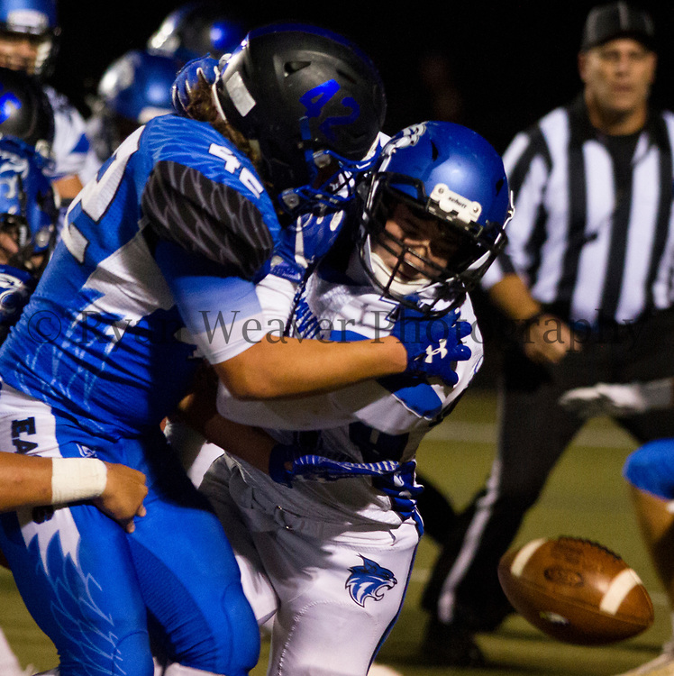 Brendan Shackles, right, of Harrisonville knocks the ball out of Grain Valley's Caleb Kreli's hands Friday night in the red zone. The Wildcat defense held on at the end for a 24-21 win for the Class 4, District 6 championship on the road.