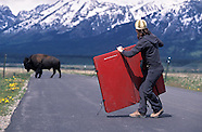 Grand Teton National Park Photos - US National Park stock pictures, photography, fine art prints
