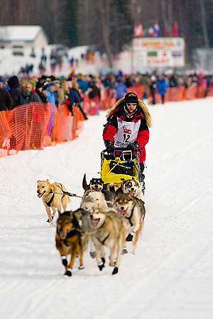 05 March 2006: Willow, Alaska - 2004 Champion Mitch Seavey (12) at the restart of the 2006 Iditarod on Willow Lake in Willow, Alaska