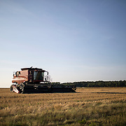 EASTVILLE, VA - JUNE 20: A combine sits in a wheat field on Friday, June 20th, 2014 near Eastville, Va. (Photo by Jay Westcott/For The Washington Post)
