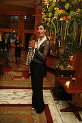 ERIN O'CONNOR, launch of The Bar at the Dorchester. Park Lane. London. 27 June 2006. ONE TIME USE ONLY - DO NOT ARCHIVE  © Copyright Photograph by Dafydd Jones 66 Stockwell Park Rd. London SW9 0DA Tel 020 7733 0108 www.dafjones.com
