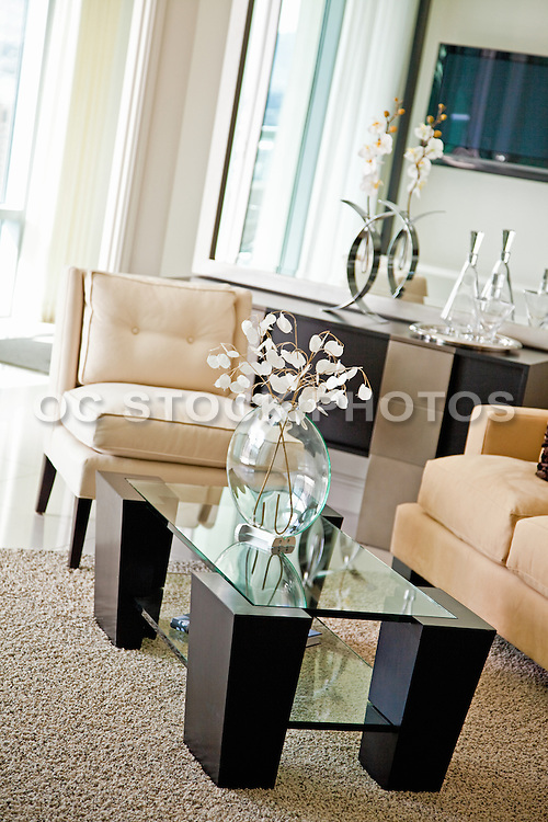 Stock Photo of Interior Living Room