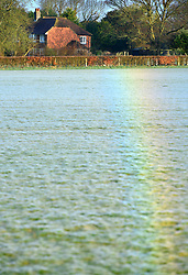 © Licenced to London News Pictures. 16th March 2017. Ripe, East Sussex, UK. Upside-down rainbow in a Sussex field caused by sunlight refracting off of millions of tiny dew-covered spider webs.. Photo credit: Peter Cripps/LNP