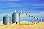 Grain bins and auger<br /> near Beechy<br /> Saskatchewan<br /> Canada