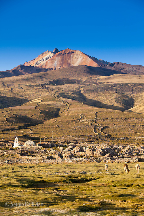 Llamas graze below Mt. Thunupa volcano on Bolivia's Altiplano next to the Salar de Uyuni.