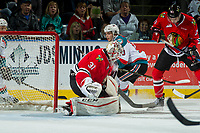 KELOWNA, CANADA - APRIL 7: Cole Kehler #31 of the Portland Winterhawks makes a save against the Kelowna Rockets on April 7, 2017 at Prospera Place in Kelowna, British Columbia, Canada.  (Photo by Marissa Baecker/Shoot the Breeze)  *** Local Caption ***