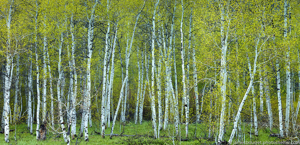 Wood River Valley, Idaho<br />