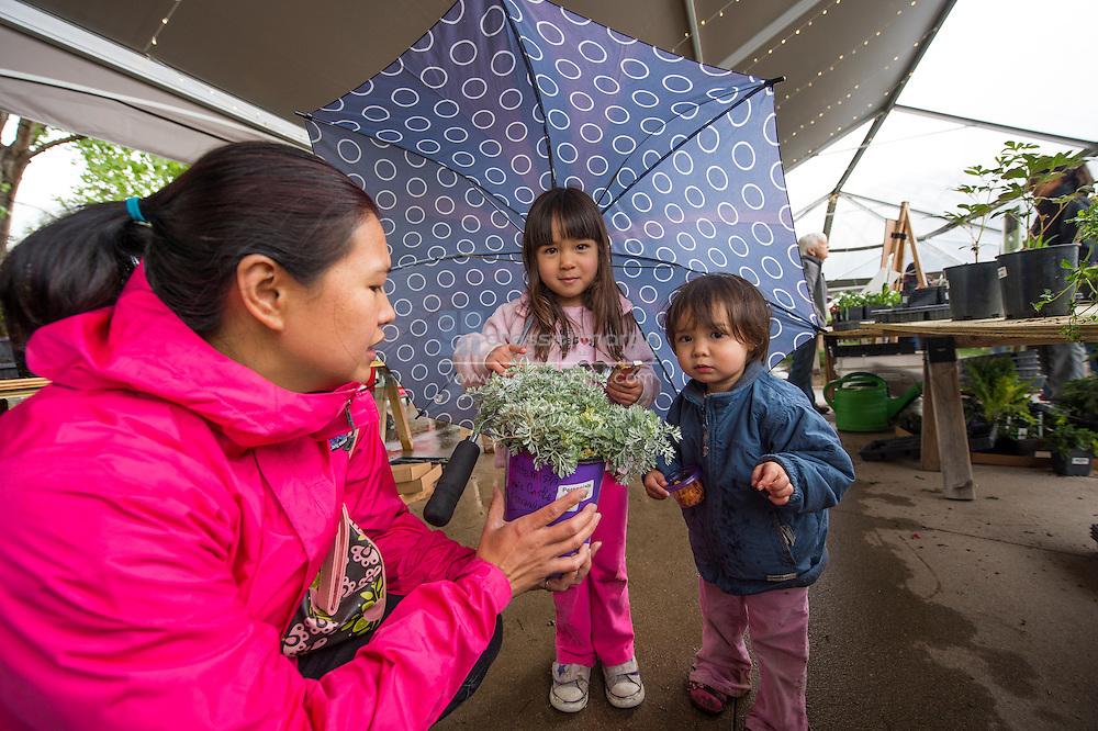 umbrella plant sale friday and saturday
