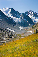 Glaciated Peaks of Boulder/Salal Divide, Coast Range British Columbia Canada