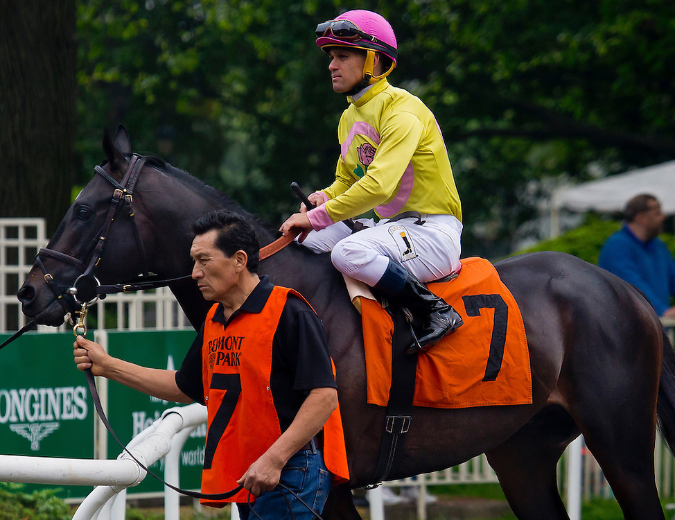 """Offering Plan"", with Javier Castellano aboard. He won the race. May 14, 2016, Belmont Park."