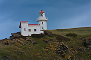Lighthouse at Taiaroa Head, Otago Peninsula, Dunedin, New Zealand