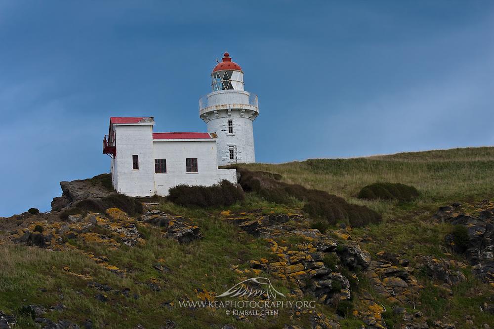 Lighthouse at Taiaroa Head, Otago Peninsula, Dunedin, New Zealand