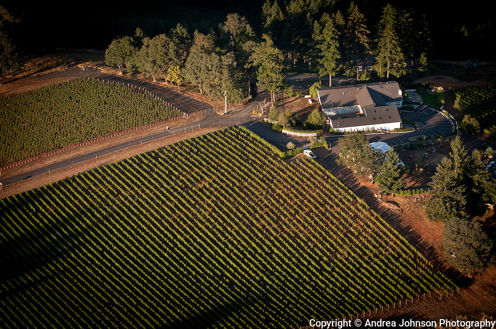 Lange Estates, Willamette Valley, Oregon