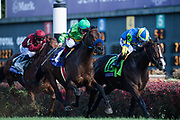 November 3, 2018: Breeders' Cup Horse Racing World Championships. Catapult and Drayden Van Dyke battle with Analyze It and Irad Ortiz Jr. in the Breeders' Cup Mile.