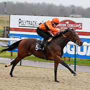 Lingfield 20th December 2012