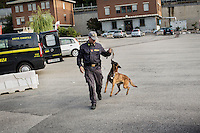 COMO, ITALY - 25 October 2013: A Dog Unit of the Guardia di Finanza (Financial Police) walks with its drug-sniffing towards a car suspected of carrying undeclared cash and drugs into Switzerland for an inspection in Como, Italy, at the border with Chiasso (Switzerland) on October 25th 2013. Cash dogs are sniffer dogs that have specially trained to detect the ink on currency notes. In the effort of cracking down on tax evasion and cash smuggling, the Guardia di Finanza works with highly trained dogs in outposts along its borders with Switzerland and France, and in international airports such as Rome Fiumicino and Milano Malpensa.<br /> <br /> In Italy, the law allows to travel with up to 10,000 euros in cash. Beyond that, one must declare to the authorities.<br /> <br /> In 2012, the Guardia di Finanza of the  borders with Chiasso in Switzerland have intercepted more than 55 million euros not declared. In 2013, until September 31st, they have intercepted more than 92 million euros.  The Guardia di Finanza of the Chiasso outpost has been using cash dogs since 2010.