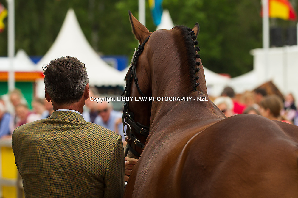 NZL-Andrew Nicholson (QWANZA) CCI4* First Horse Inspection: 2013 GER-DHL Luhmühlen International Horse Trial (Wednesday 12 June)