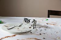 Animal figurines on messy table