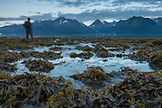Man walking along the shore of Resurrection Bay, Seward, Alaska