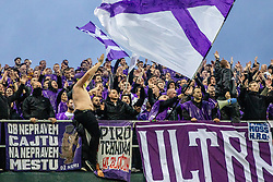 Fans of NK Maribor during a football game between NK Olimpija Ljubljana and NK Maribor in Final Round (18/19)  of Pokal Slovenije 2018/19, on 30th of May, 2014 in Arena Z'dezele, Ljubljana, Slovenia. Photo by Matic Ritonja / Sportida