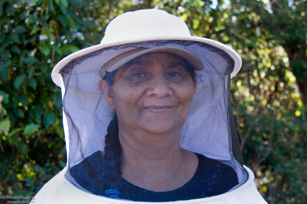 Francisca Valverde, 56, prepares to check her boxed beehives. Francisca has been a beekeeper for 10 years and is a founding member of both COOPSADES (local Co-Op) and UCASA (Union de Cooperativas Agropecuarias El Sauce). UCASA exports honey certified by the Fairtrade Labelling Organization (FLO). San Nicolas, El Sauce, León, Nicaragua. January 23, 2014.