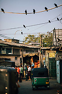 Workers at the local wholesale market, Colombo, Sri Lanka, Asia