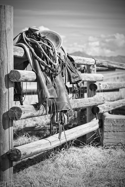 Western saddle resting on a rail fence during a Bison roundup break in Montana.