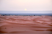 Marocco (South - Sahara)